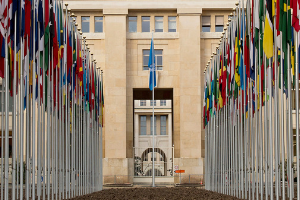 The flags of the 193 UN Member States fly at the Palais des Nations, seat of the UN Office at Geneva